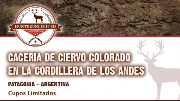 CACERIA DE CIERVO COLORADO EN LA CORDILLERA DE LOS ANDES - PATAGONIA - ARGENTINA